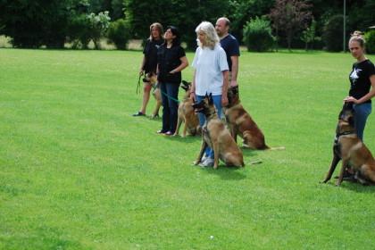 von links: Carmen mit Bobel, Montse hält Chiva, Matthias mit Chiro, ich und Aymy, sowie Laura mit Ace